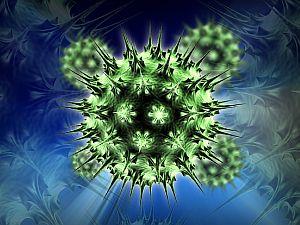 papilloma vírus szűz vakcina hogyan lehet lemondani a helmint ürülékéről?