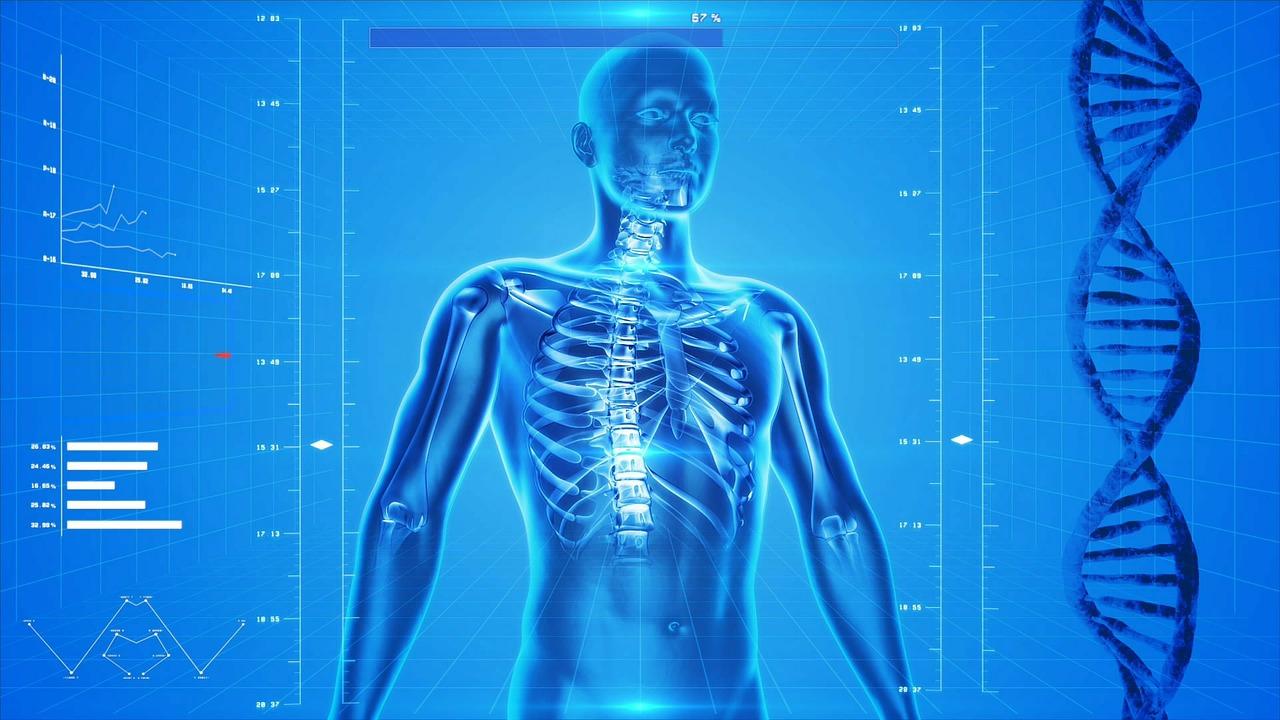 típusú jódférgek az emberi testben