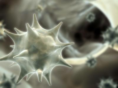 papilloma és rák kockázata