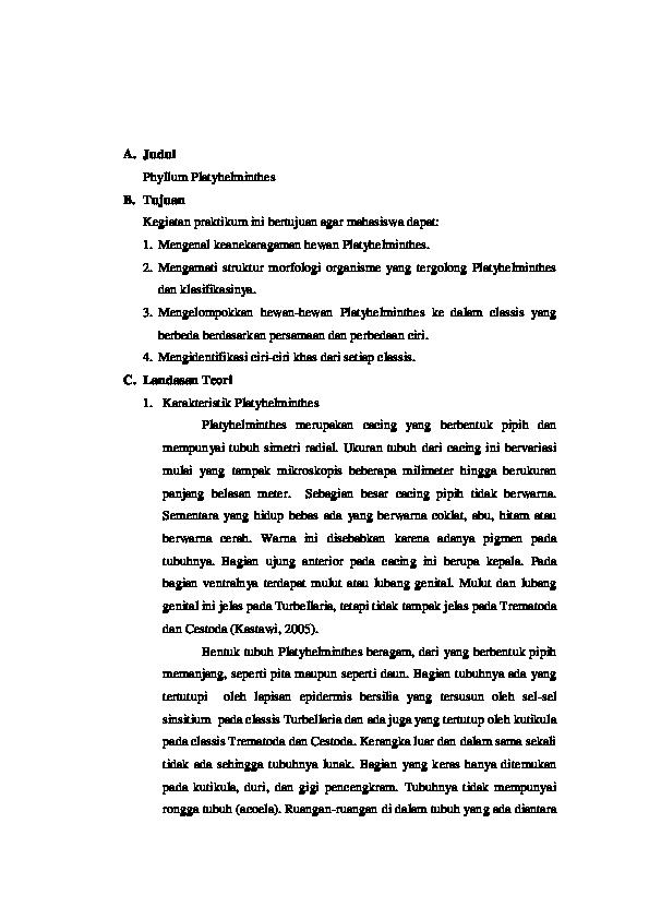 laporan filum platyhelminthes)