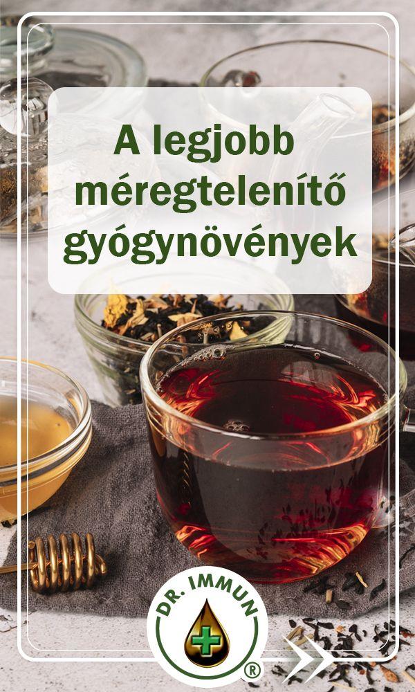 vastagbél méregtelenítő tea receptje