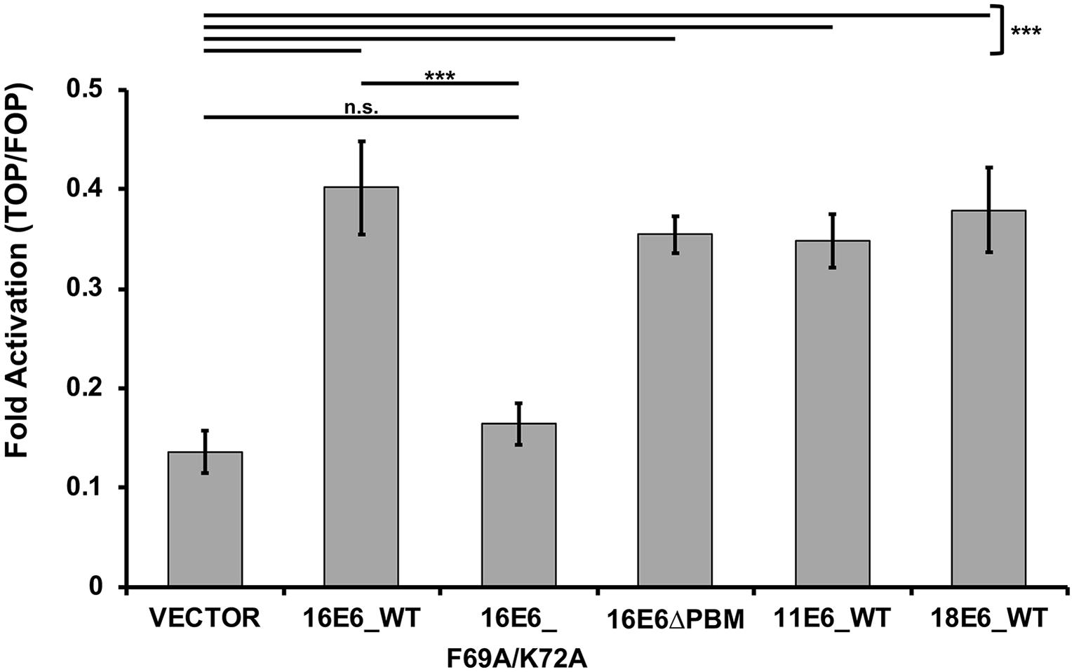 humán papillomavírus ubiquitin retikulált papillomatosis kezelése