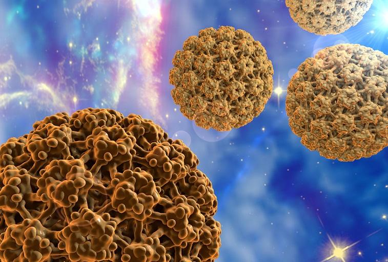 helminticid dózis második felidézés papilloma vírus