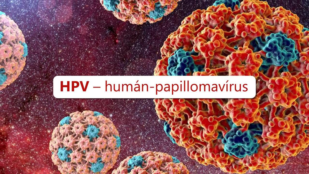 humán papillomavírus rákos sejtek