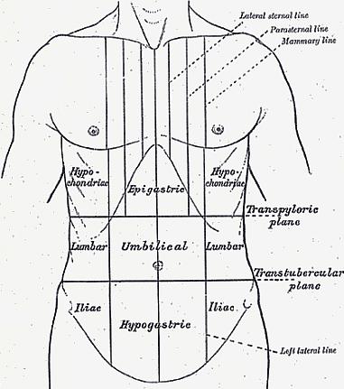 Betegségeket jelez a gyomorfájás - HáziPatika