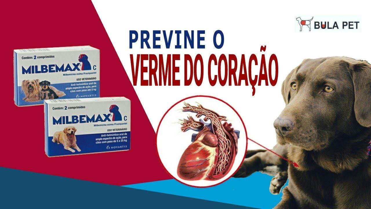 milbemax szívféreg