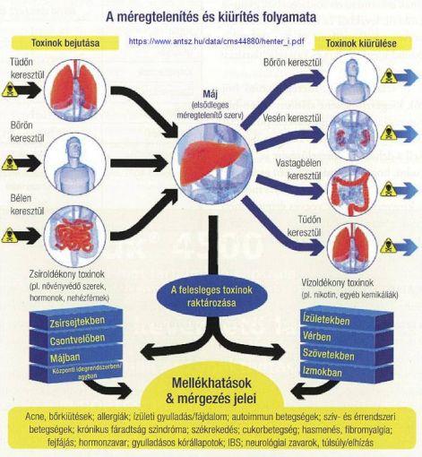 giardiasis epilálás