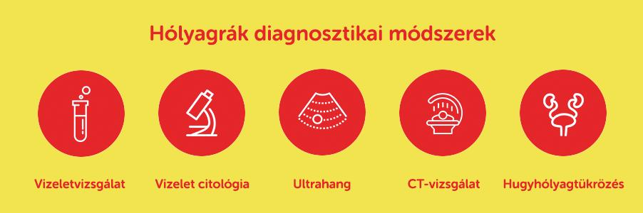 Diagnózis és kezelés