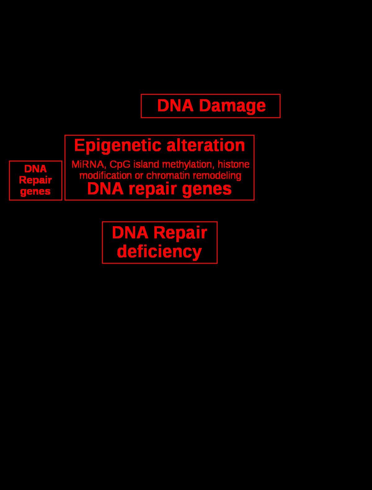 a rák többnyire genetikai