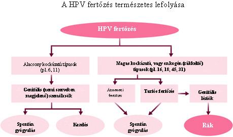 hpv magas kockázatú tünetek)
