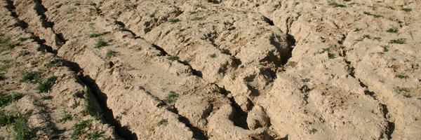 a talaj szennyeződése ellen)