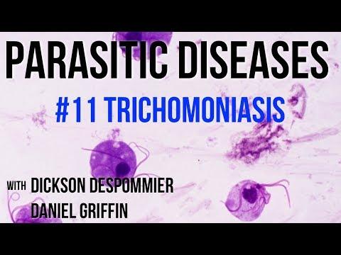 szemölcsök és trichomoniasis)