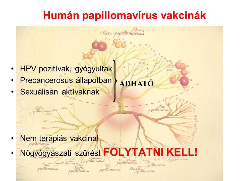 emberi papillomavírus vakcina állomány immunitása