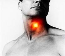 Torkunkban lehet a rákot okozó vírus - HáziPatika