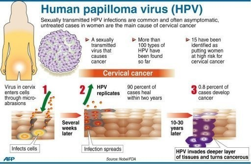 A HPV-fertőzés és a méhnyakrák
