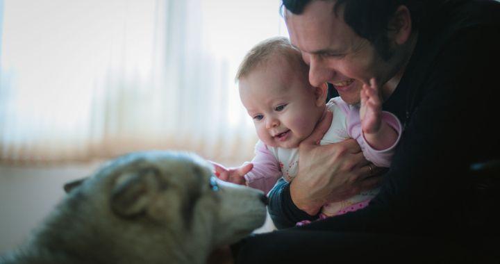 giardia 1 éves gyermekek az urogenitális rendszer parazitáinak kezelése