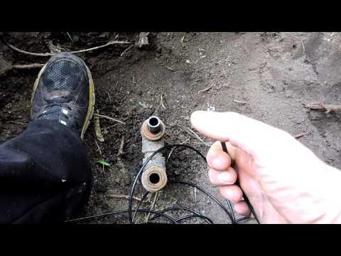 meddig működik a féregtábla pinworms vakbélgyulladás