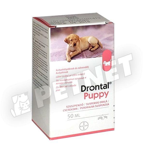 Szabadforgalmú gyógyszerek / vény nélkül - Belső féreghajtók - Equus webbolt Féreg gyógyszer recept