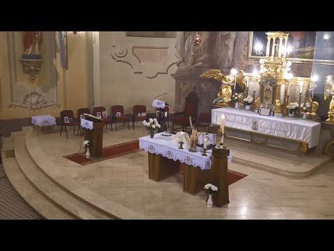 féreg temploma)
