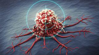 hármas negatív rákhírek vagy hermafrodita férgekkel