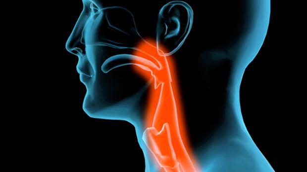 hpv fej- és nyakrák kockázata