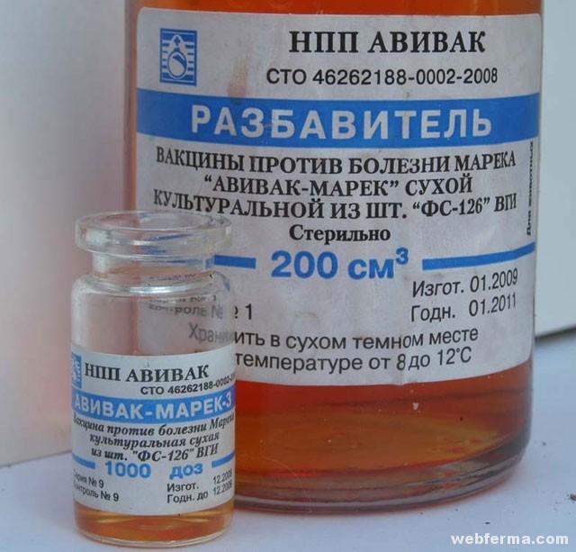 beöntések féreghajtó gyógyszerek után