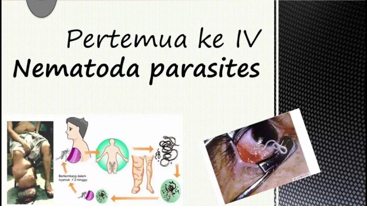a delix f cseppek parazitaellenesek