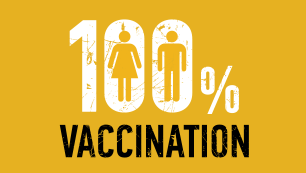 vidám papillomavírus vakcina)