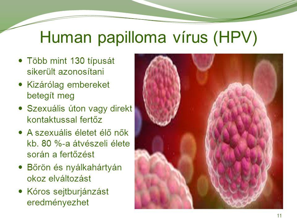 hpv vírus késleltetése)