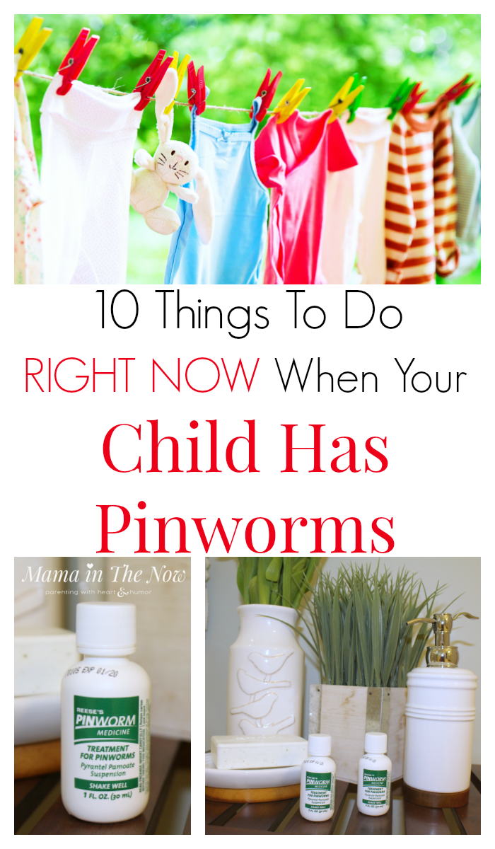 Hatékony gyógyszerek pinworms felnőtteknél