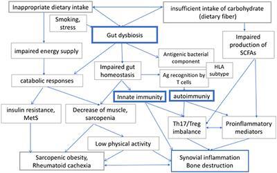 Gyulladásos bélbetegségek bőrgyógyászati vonatkozásai – a bél-mikrobiom tükrében