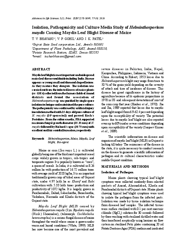 a helminthosporium maydis elleni védekezés)