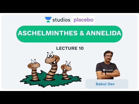 élőhely aschelminthes