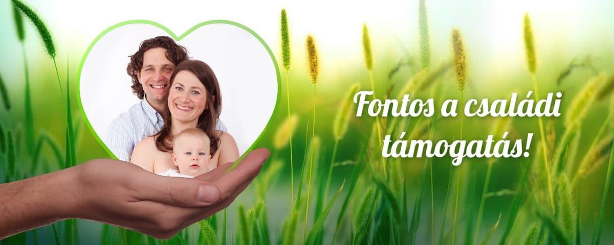 gyomorrák család)