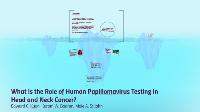 hpv pozitív oropharyngealis rák túlélési aránya