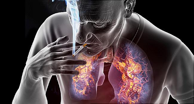hpv, valamint fej- és nyaki rák áttekintése)