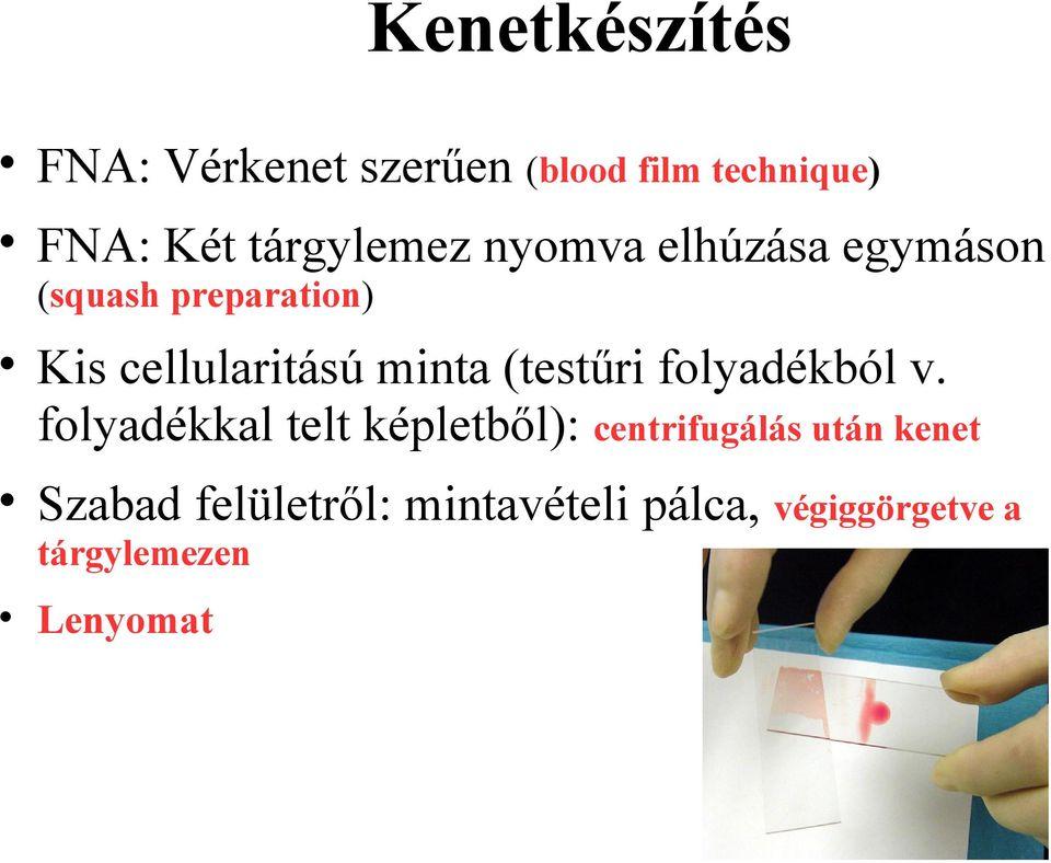 krónikus retikulált papillomatosis)