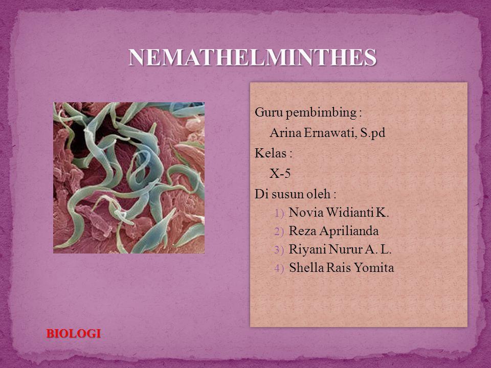nemathelminthes kelas x)