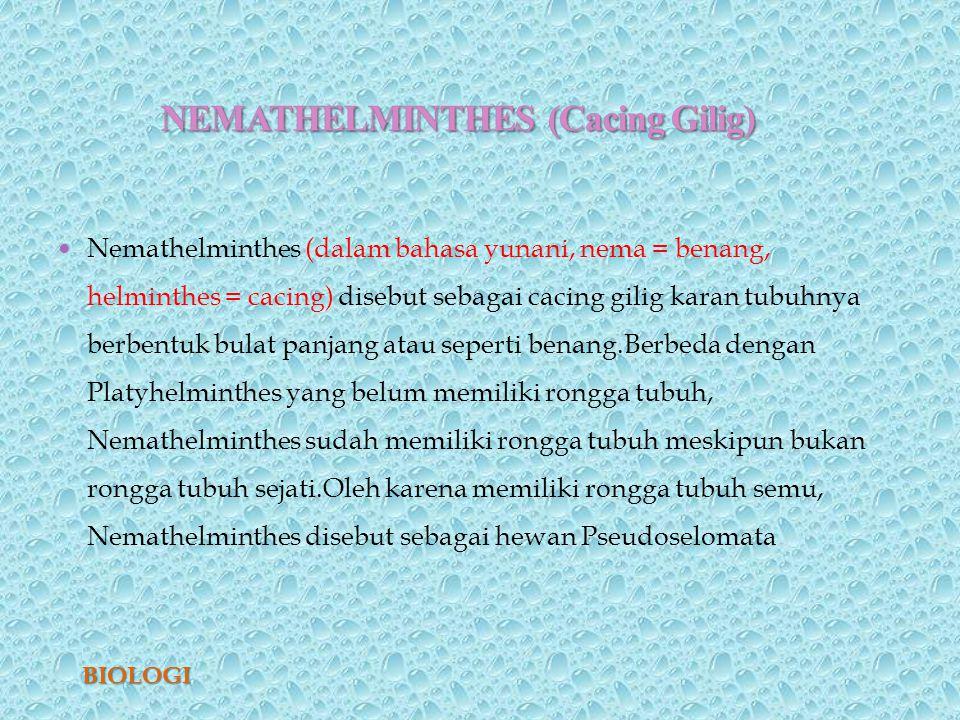 nemathelminthes peranan dalam kehidupan)