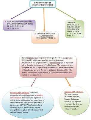 Mi a méhnyakrák? - Diagnózisa és kezelése - Debrecen Mamadoki Bt.