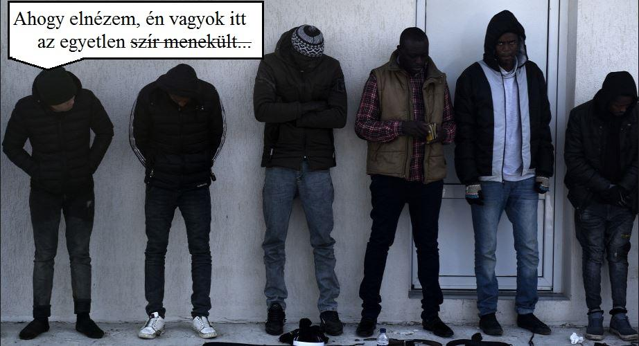 paraziták részeg pulóver)