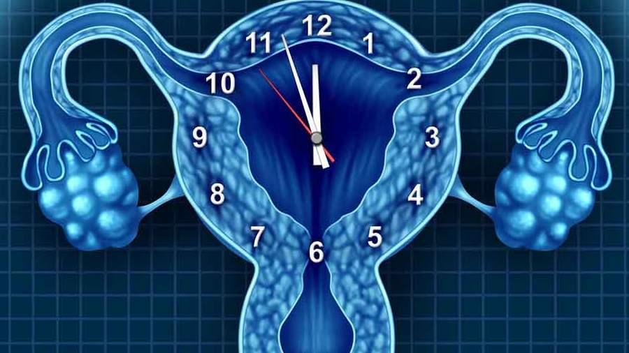 Petefészekrák - az ovárium rákja