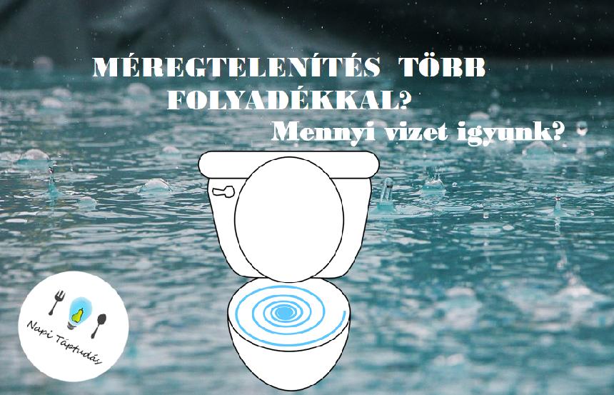 víz méregtelenítés)