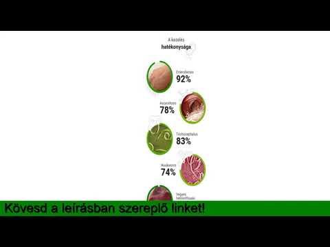 protozoonok és helmintojások kezelése