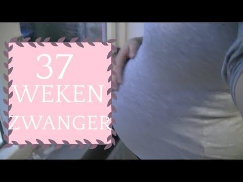 zwanger hasmenés