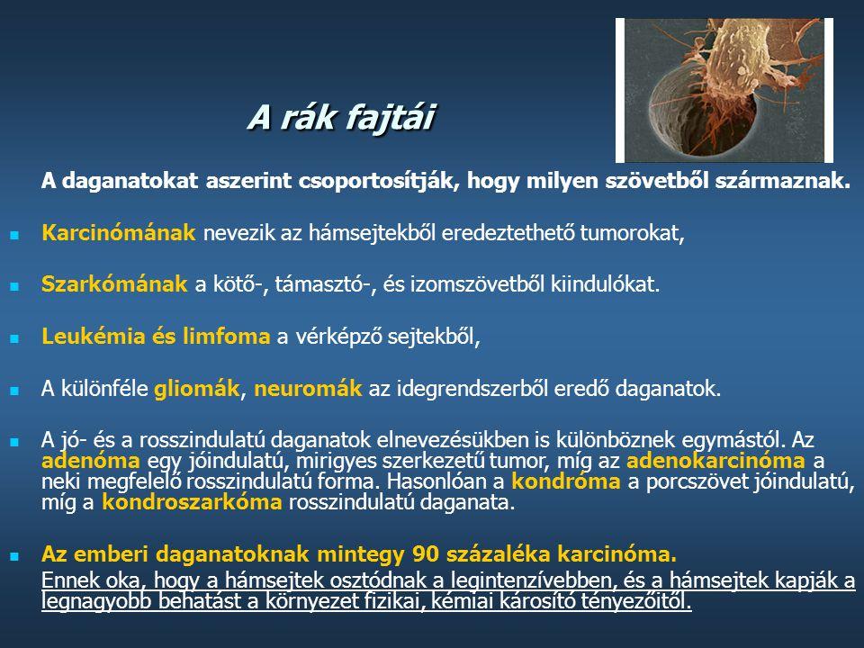 a papilloma parazita