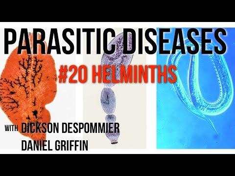 fertőző helminthiasis tetraciklin kenőcs papillómákból