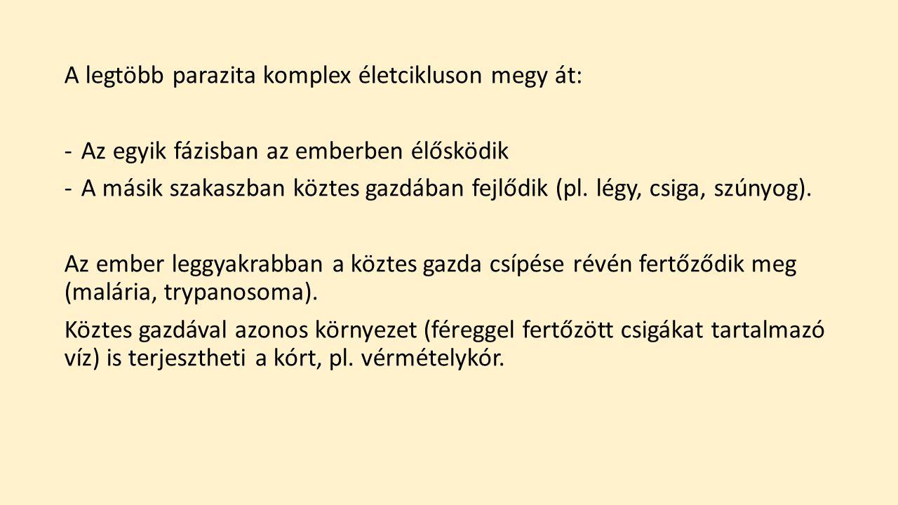 példák egysejtű parazitákra)