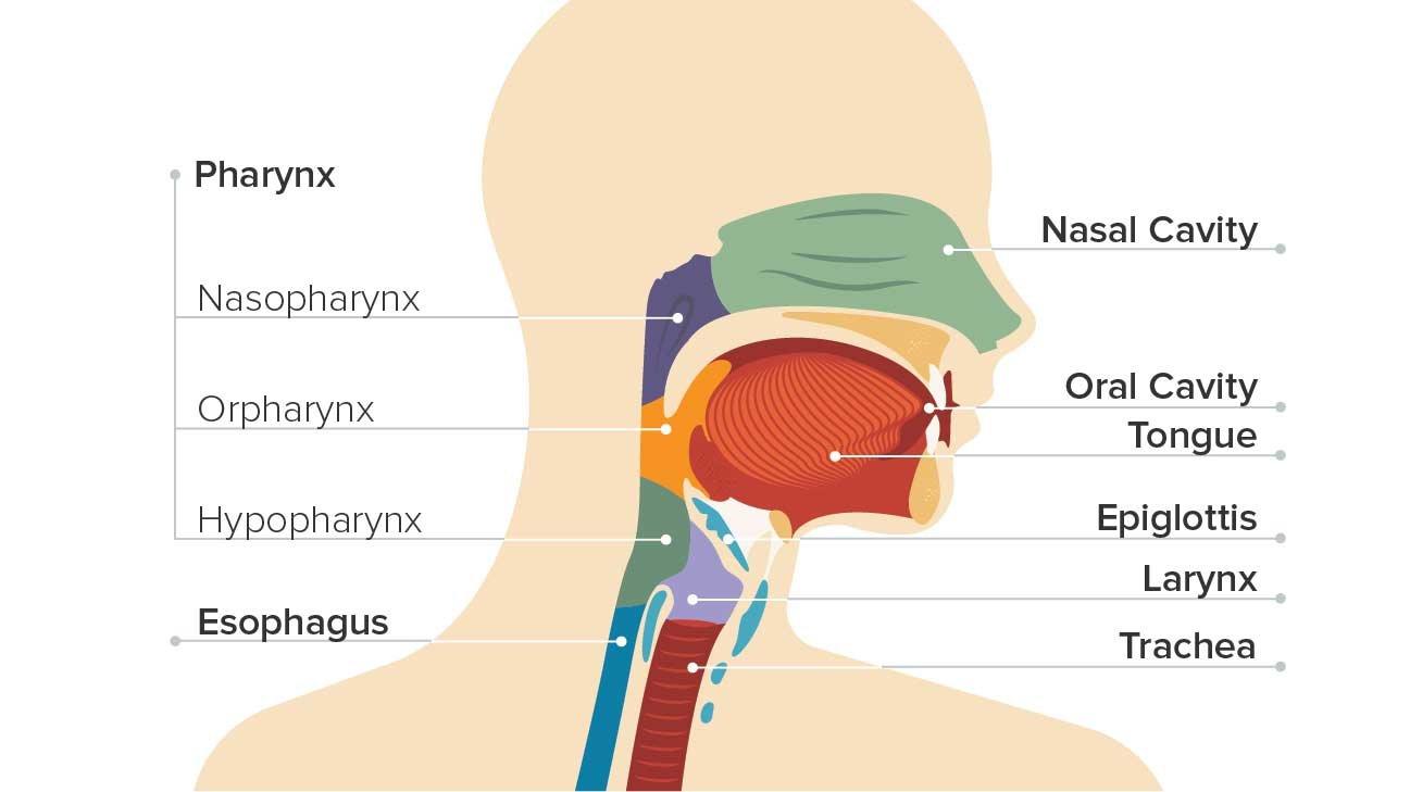 a nasopharynx paraziták duzzanata